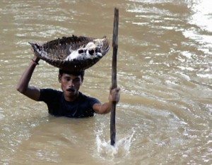 How amazing is this villager! He balanced a basket on his head to save numerous stray cats from drowning in the massive floods of India in 2011.